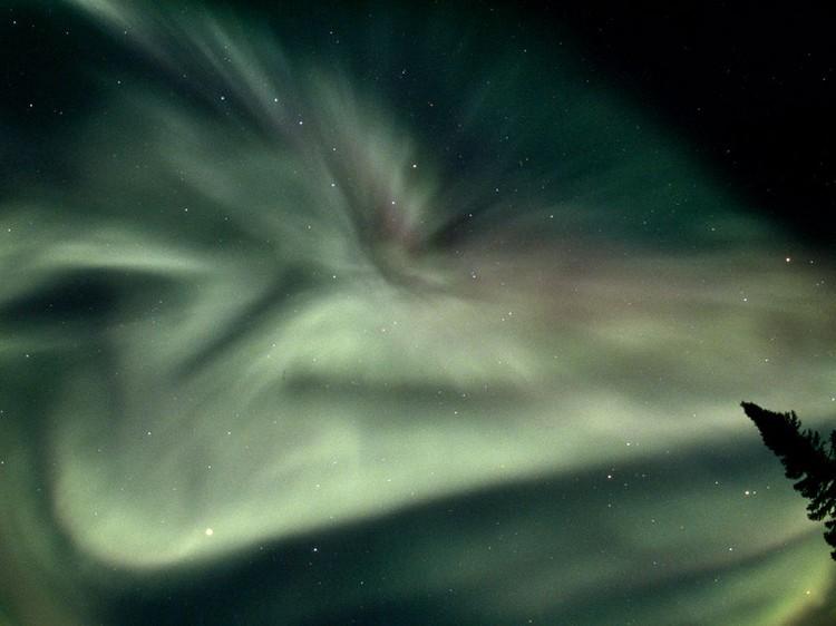 Дивовижні вогні у небі: найкращі фотографій північного сяйва (17)