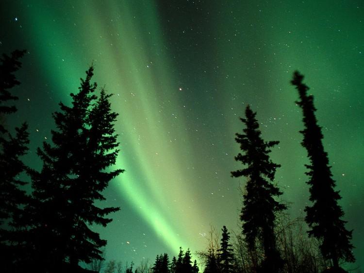 Дивовижні вогні у небі: найкращі фотографій північного сяйва (16)