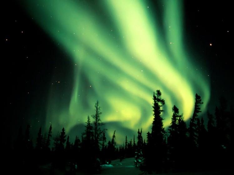 Дивовижні вогні у небі: найкращі фотографій північного сяйва (14)