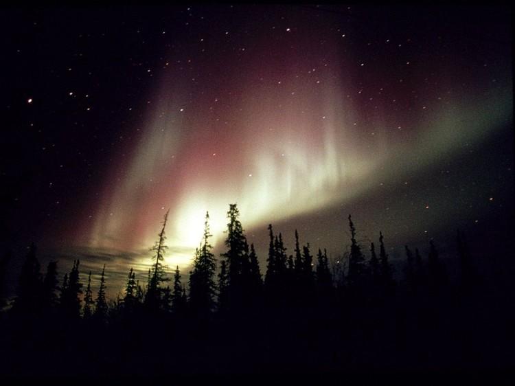 Дивовижні вогні у небі: найкращі фотографій північного сяйва (12)