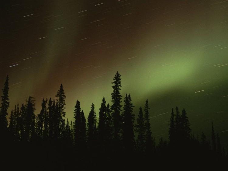 Дивовижні вогні у небі: найкращі фотографій північного сяйва (10)