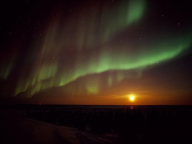 Дивовижні вогні у небі: найкращі фотографій північного сяйва (9)