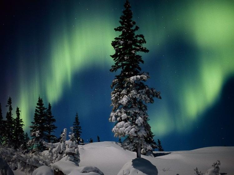 Дивовижні вогні у небі: найкращі фотографій північного сяйва (6)