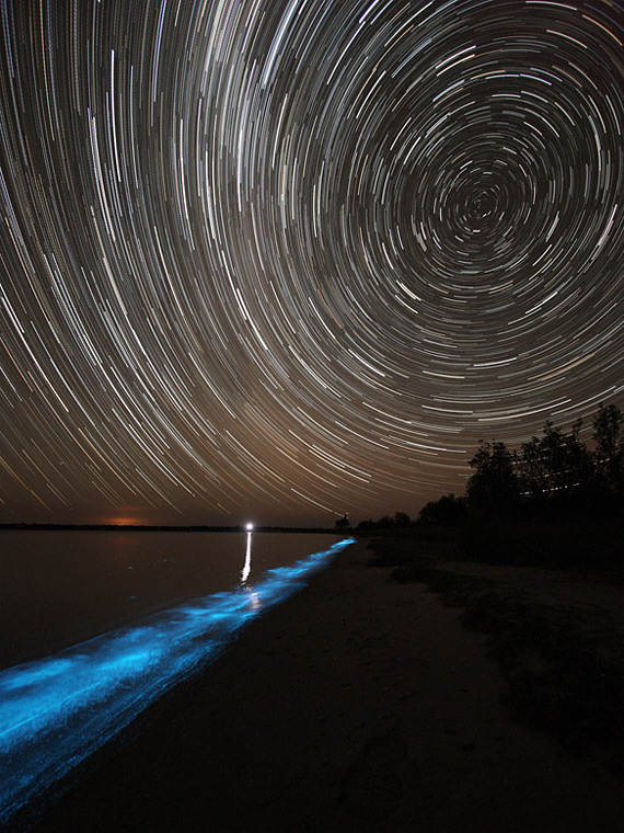 Дивовижне біолюмінісцентне озеро в Австралії (6)