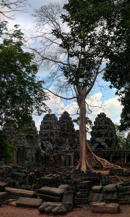 Ангкор Ват у Камбоджі - містичне та дивовижне по своїй атмосфері і масштабності місце (8)