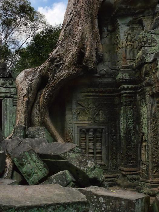 Ангкор Ват у Камбоджі - містичне та дивовижне по своїй атмосфері і масштабності місце (4)