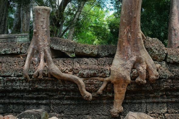 Ангкор Ват у Камбоджі - містичне та дивовижне по своїй атмосфері і масштабності місце (2)