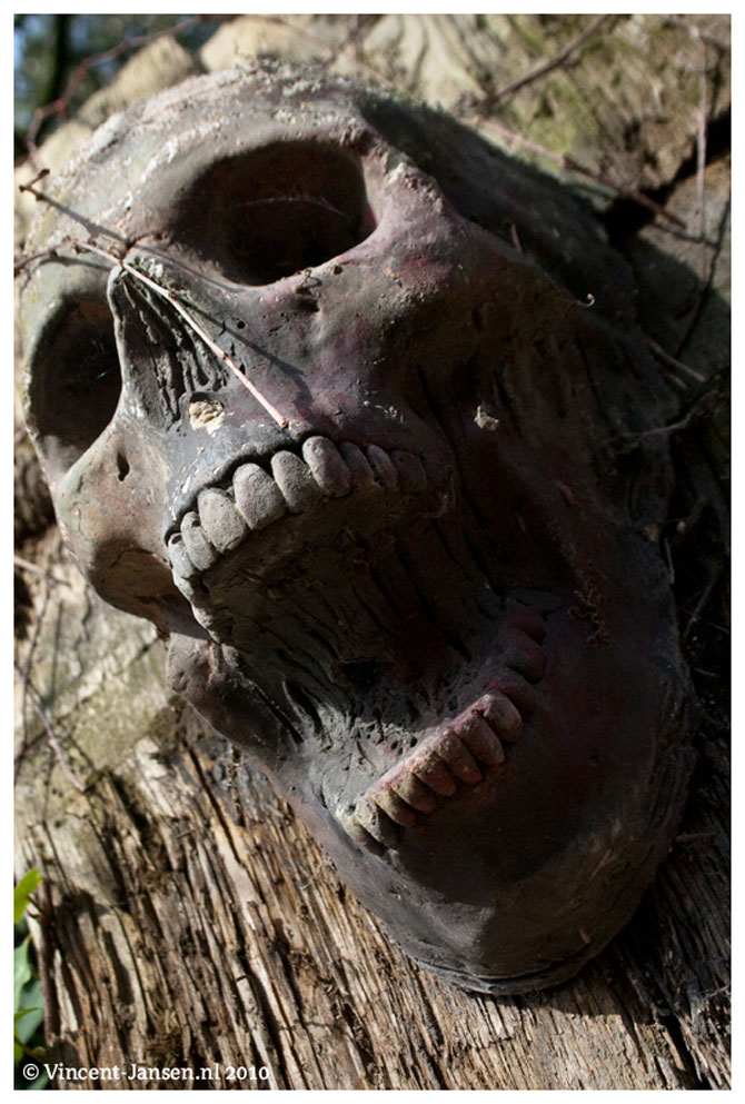 Будинок 1000 духів - пекельний ресторан, що наводить жах (6)