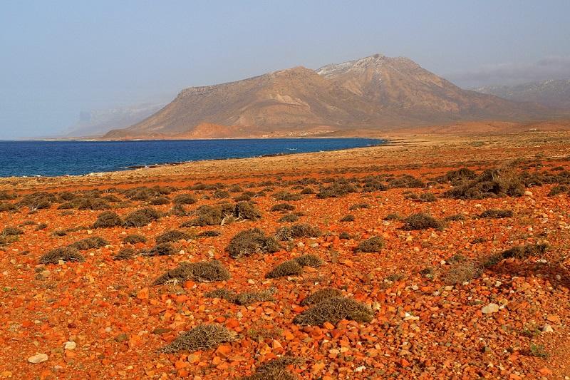 10-Природа острова Сокотра