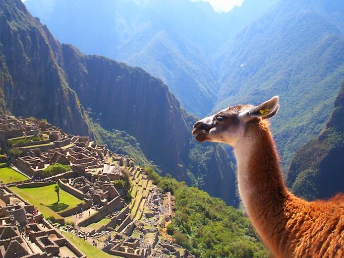 Мачу-Пікчу - місто дивовижної історії інків і нерозгаданих таємниць (9)