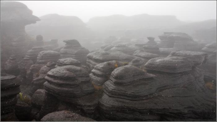 Загублені світи гори Рорайма (4)