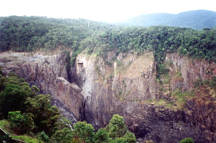 Дивовижна природа вологих тропіків Квінсленда (2)