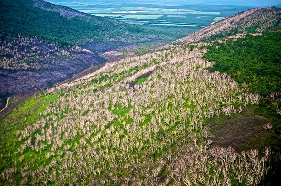 Долина гейзерів на Камчатці (13)