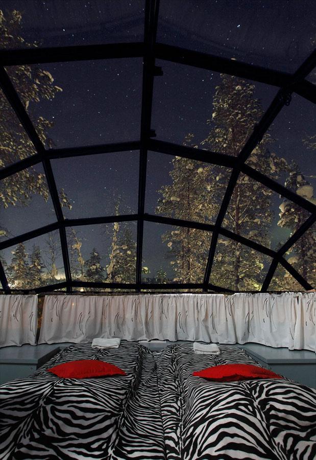 Унікальний готель у Лапландії зі скляними іглу для незабутнього відпочинку (6)