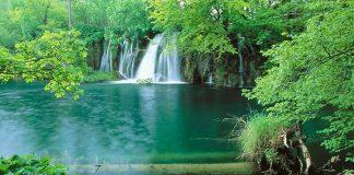 Плітвіцькі озера - Хорватське чудо природи (6)