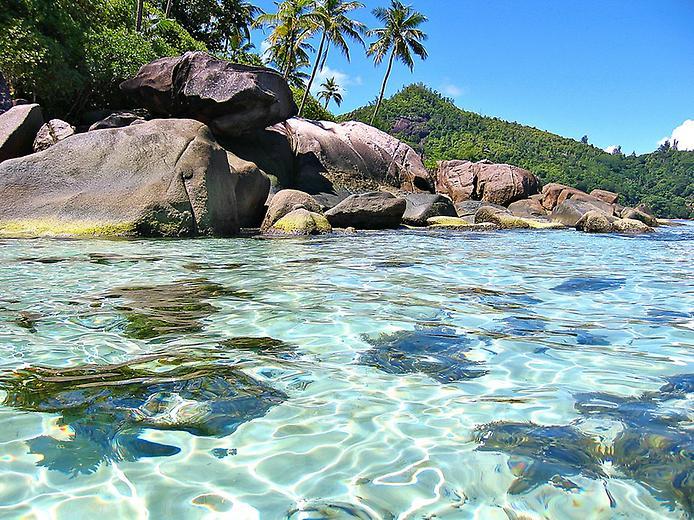 Сейшельські острови - справжній Рай на Землі! (9)