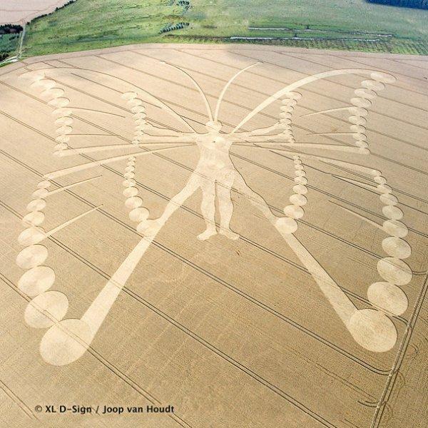 Величезний малюнок людини-метелика, серпень 2009 року, Нідерланди. Це найбільший коло за весь час спостереження - його розміри 530 на 450 метрів, а з'явився він всього за одну ніч!