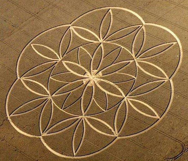 10 дивовижних красивих кіл у вигляді символу «квітка життя». Англія, 2003 рік.