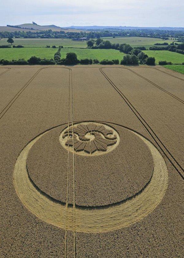 Загадкове асиметричне коло на англійському поле, серпень 2010 року.