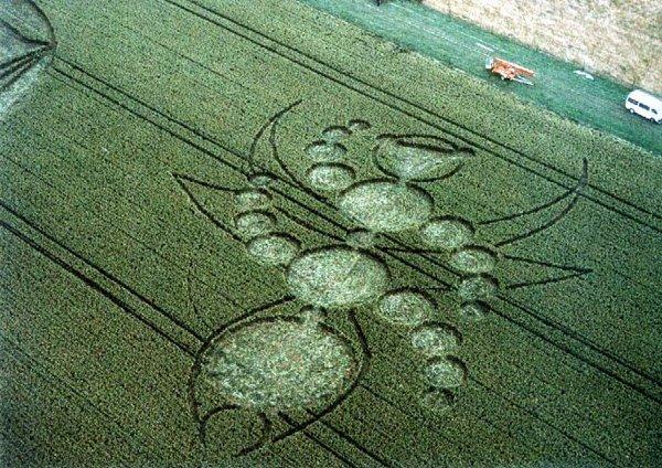 Нова Зеландія, січень 2002 року - чи комаха, чи то якась схема.