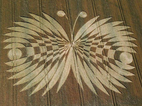 круг-метелик з англійського графства Оксфордшир. 2007