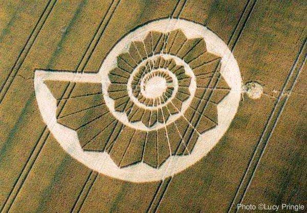 Коло-«равлик», що з'явилось в 2002 році в Англії