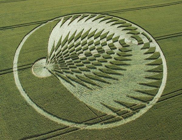 коло з Оксфордшира з візерунком, що нагадує хвіст павича. 2006