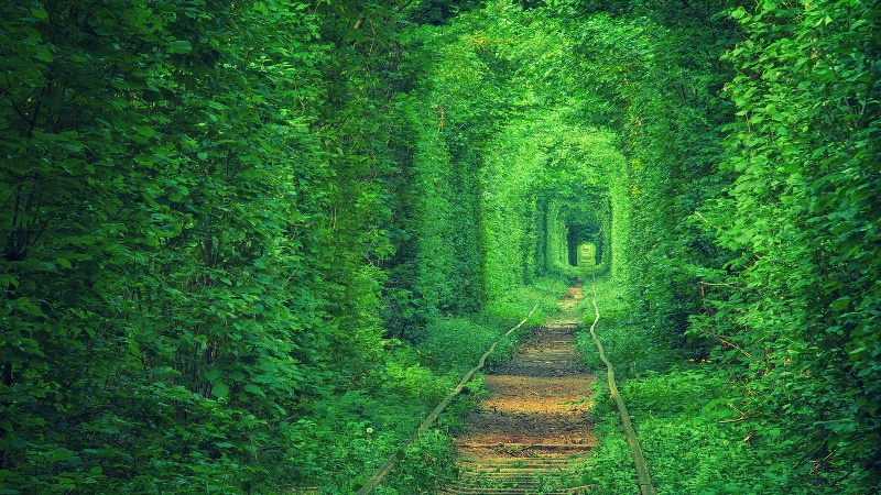Два із десяти природних чудес України – на Херсонщині