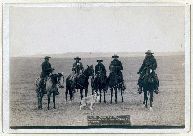 Дикий Захід на ретро фотографіях Джона Грабіли (1)