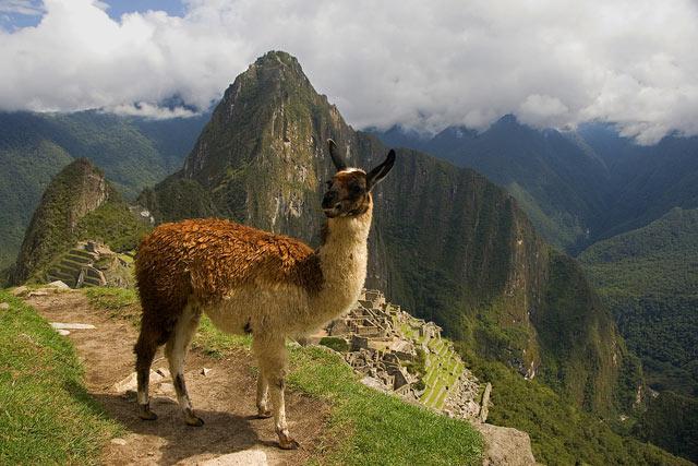 Пригода через шлях Сонця: стежка інків в Мачу-Пікчу (9)