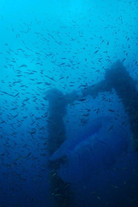 Острови Чуук (Трук) — Лагуна загиблих кораблів (1)