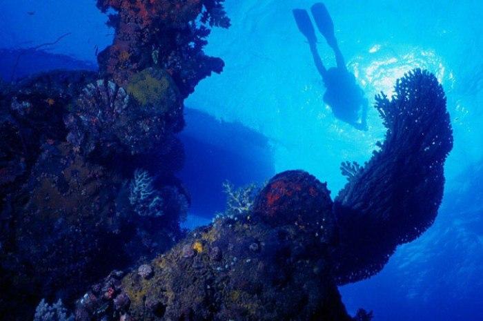 Острови Чуук (Трук) — Лагуна загиблих кораблів (24)