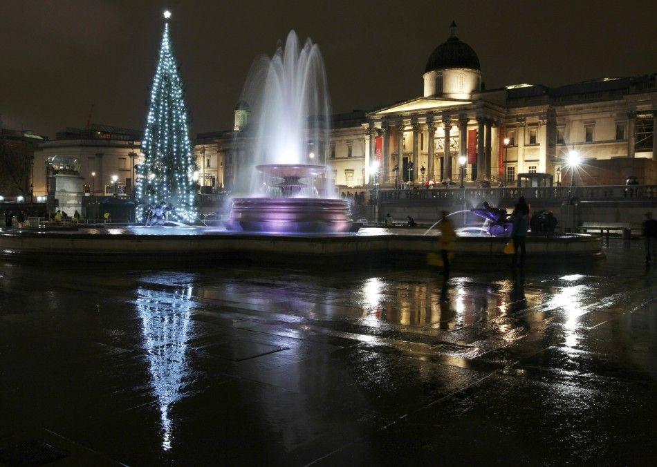 Різдвяних ялинок в Лондоні досить багато. Ось одна з них красується на Трафальгар-сквер