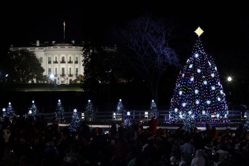 Ця ялина стоїть біля Білого дому у Вашингтоні.