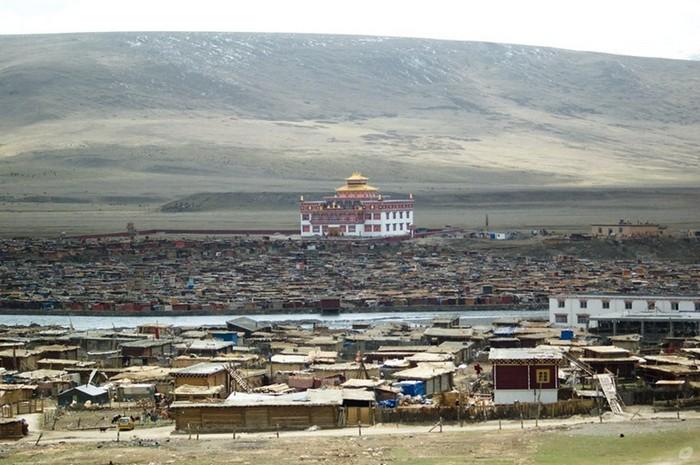 Найбільший в світі монастир під назвою Yarchen: 10 000 ченців на висоті 4 000 метрів (5)