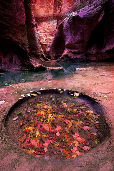 Підземний храм-метро: казкова печера в Сіоні (5)