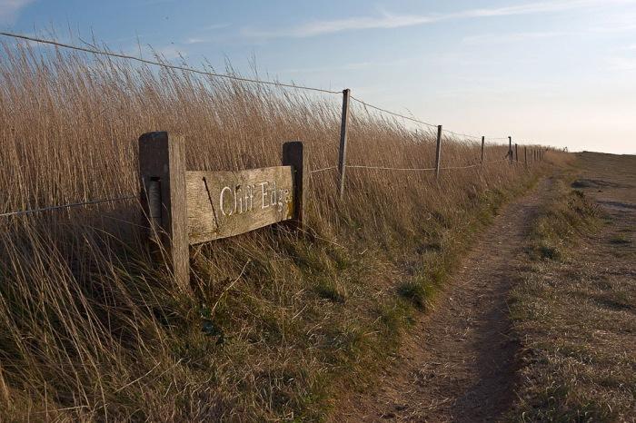 Крейдяні скелі Сім Сестер і Бичі-Хед в графстві Суссекс (5)