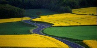 Фотографії найкрасивіших доріг (22)