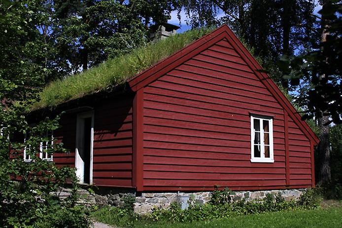 Унікальні зелені дахи в Норвегії (4)