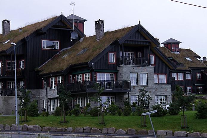Унікальні зелені дахи в Норвегії (3)