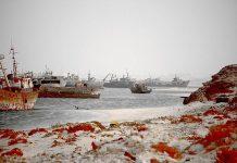 Найбільше у світі кладовище кораблів (9)