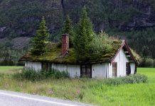 Унікальні зелені дахи в Норвегії (13)