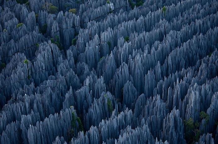 Кам'яний ліс Мадагаскару (14)