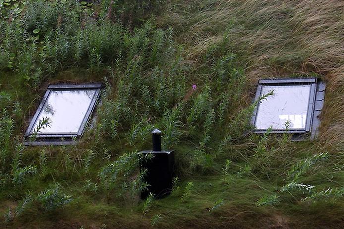 Унікальні зелені дахи в Норвегії (1)