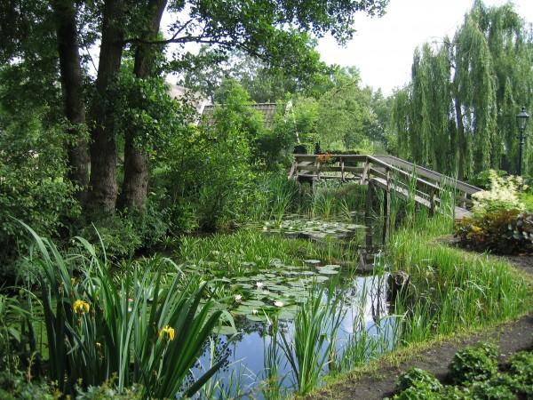 Гітхорн (Giethoorn) - село без доріг або Північна Венеція (5)