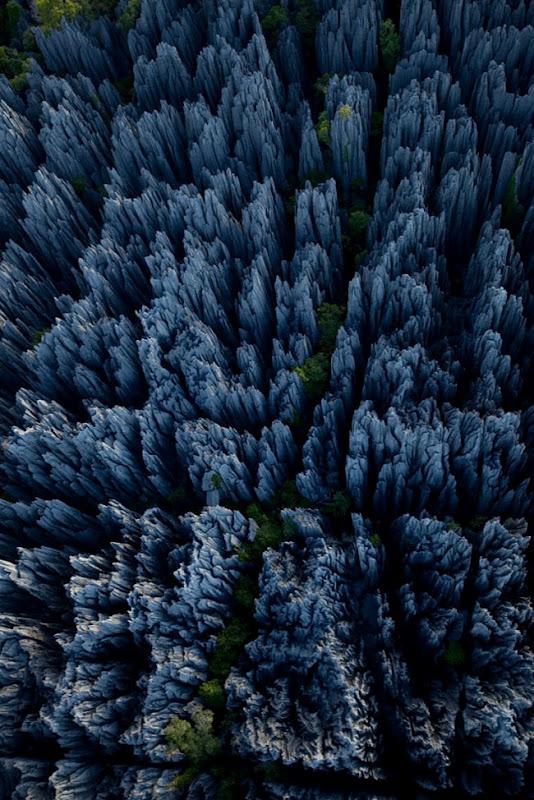 Кам'яний ліс Мадагаскару (2)