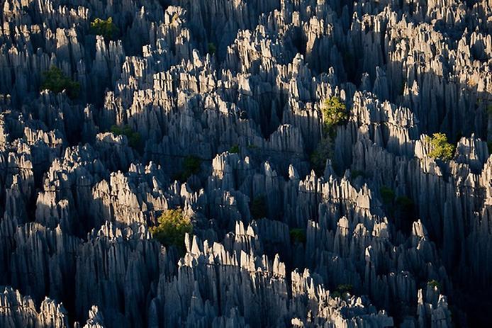 Кам'яний ліс Мадагаскару (13)