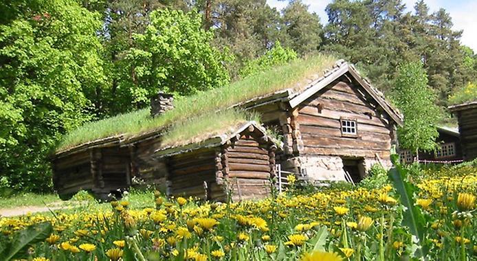 Унікальні зелені дахи в Норвегії (10)