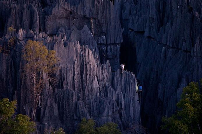 Кам'яний ліс Мадагаскару (12)