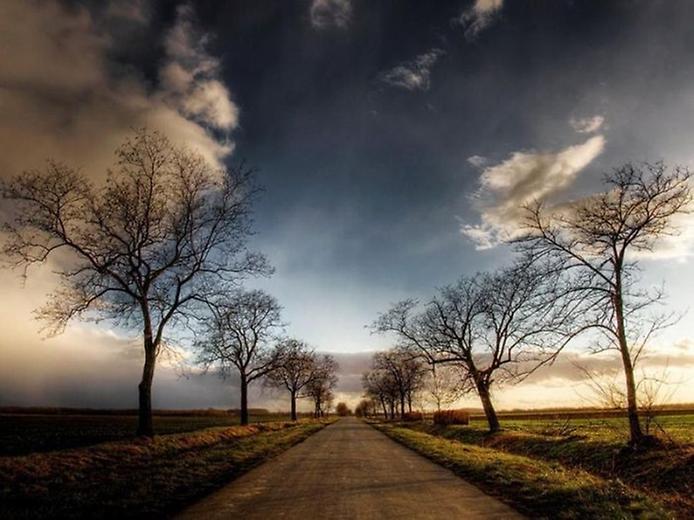 Фотографії найкрасивіших доріг (18)